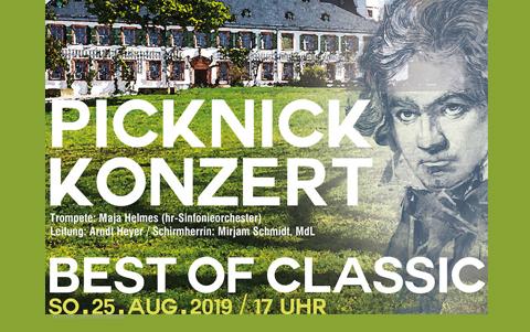 Klassikpicknick 2019<br />Kammerphilharmonie Seligenstadt<br />25.08.2019