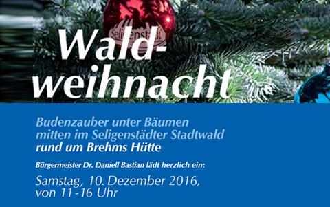 Waldweihnacht<br /> am 10.12.2016